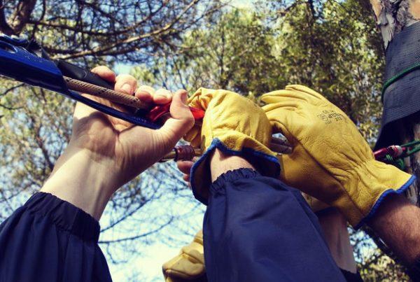 Rope work team building outdoor barcelona