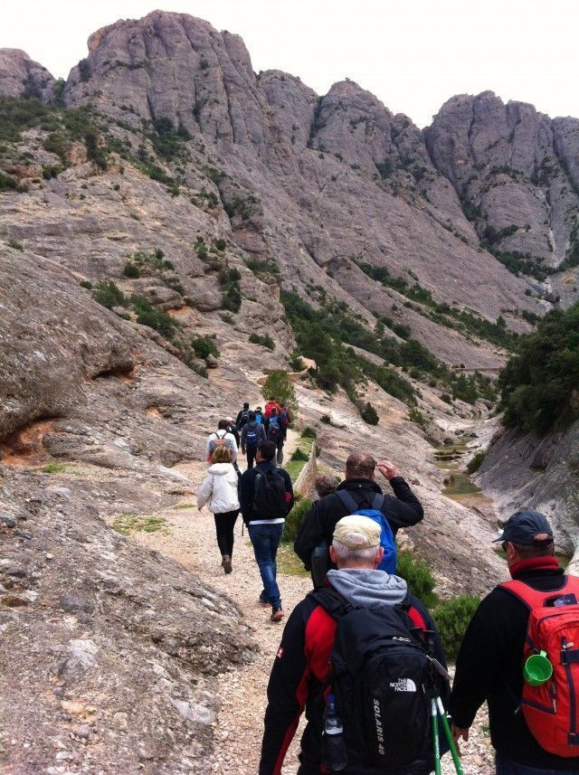 OUTDOOR CONFERENCE: OFFSITE MEETINGS INTO NATURE
