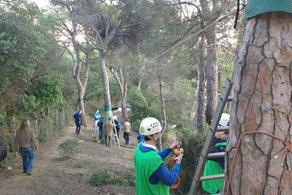 team-building_barcelona_adventure_nature_rope_teamwork