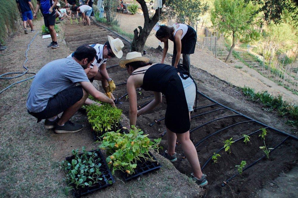 TEAM BUILDING SOCIAL À BARCELONE: LE TEMPS EST VENU DE PLANTER UN JARDIN ORGANIQUE!