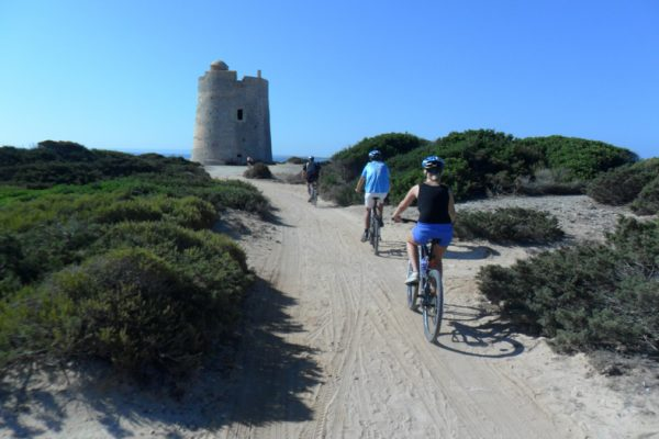 ibiza mtb bike tours