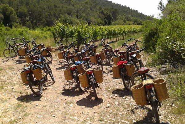 Ebikes Penedes team building activity