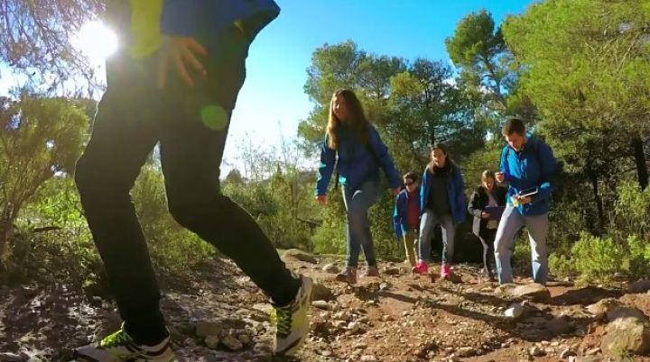hiking excursion for groups