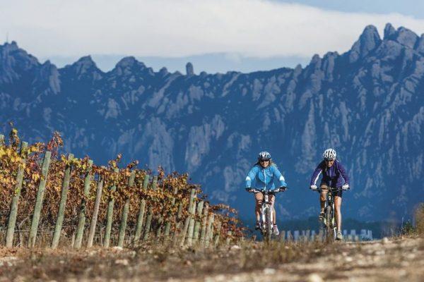 Outdoor meeting mountain biking vineyards Penedes