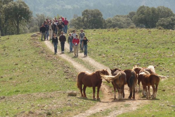 MONTSENY OUTDOOR MEETING CONFERENCE