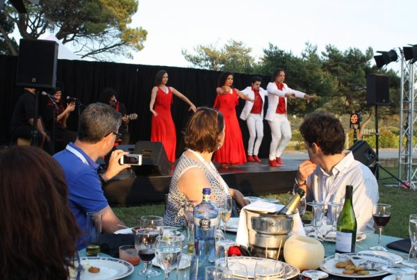 FLAMENCO live MUSIC FOR EVENTS