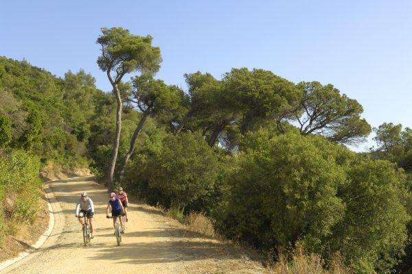 outdoor meeting mountain biking Barcelona Collserola